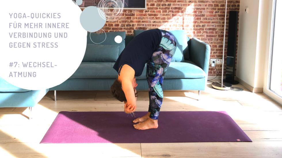Yoga-Quickies für mehr innere Verbindung und gegen Stress - #7: Wechselatmung